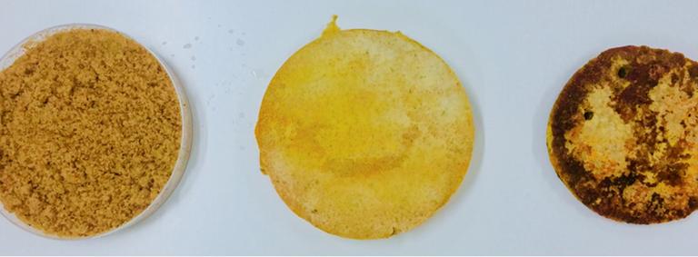 fungy-burger-patty-3